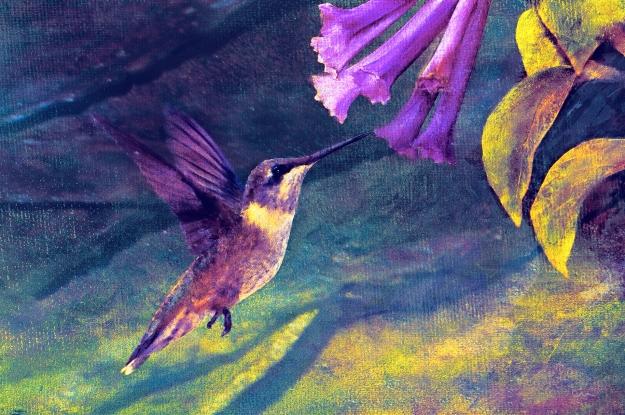 hummingbird-skeeze_cfxtex3fltexsigcfxtrptpres4